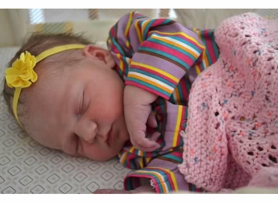 newbornv
